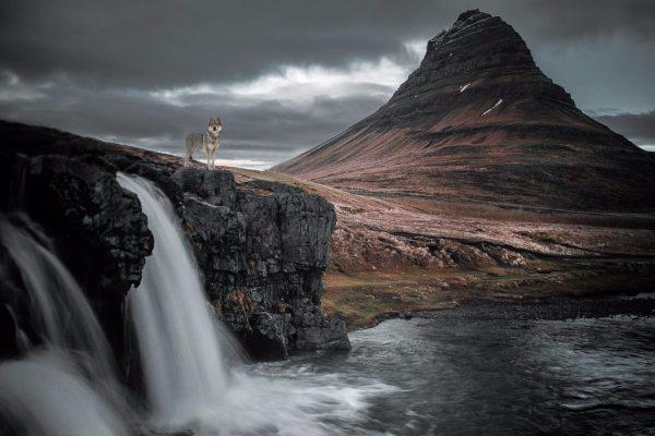 Tour Juego de Tronos Islandia